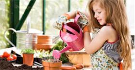 Доступен заказ растений на нашем сайте.
