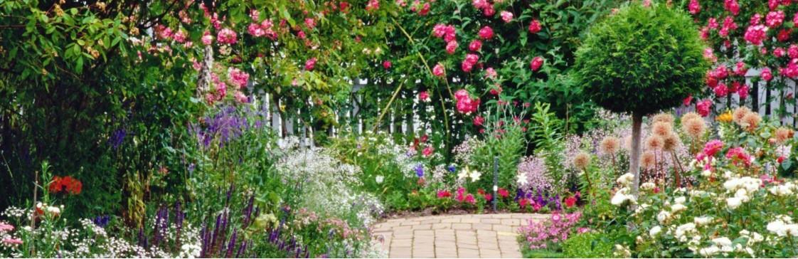 Всесезонный цветник - удивительное украшение Вашего сада