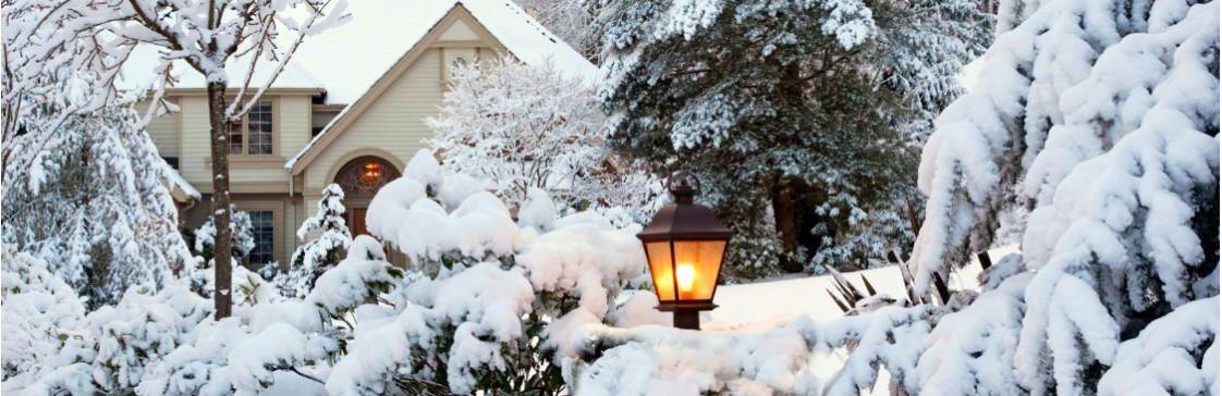 Январь не за горами. Зимние работы в саду