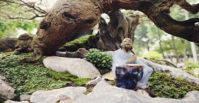 Рокарий и альпинарий! Гармония природы у Вас в саду!