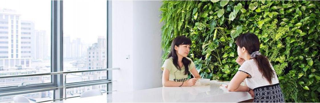 Фітостіна – вертикальне озеленення у вас в помешканні