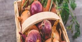 Правила хранения урожая