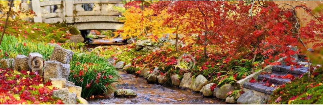 Ландшафтный бум: японские сады