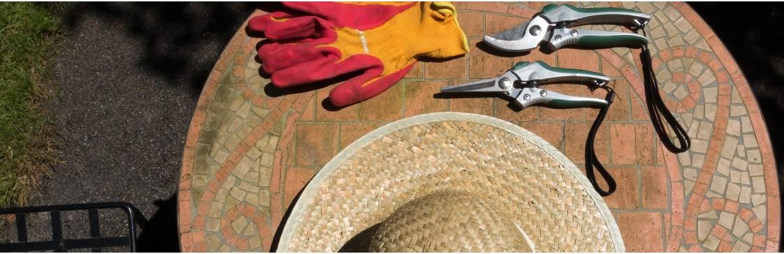 ТОП садових інструментів без яких не обійтись на дачі