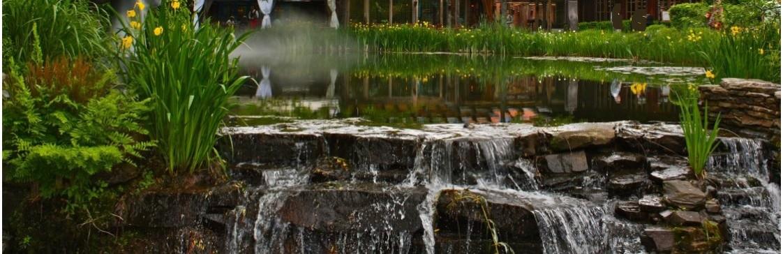 Рокарій та альпінарій! Гармонія природи у Вас в саду!