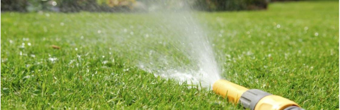 Як доглядати за газоном влітку? Секрети поливу та стрижки